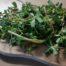 Okusna zelenjava