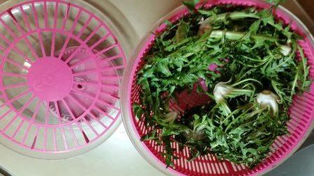 Kuhinjska centrifuga za listnato zelenjavo
